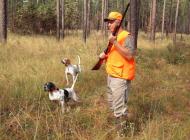 hunter-613455_960_720